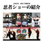 双子忍者の忍者ショーの演目とパッケージ紹介