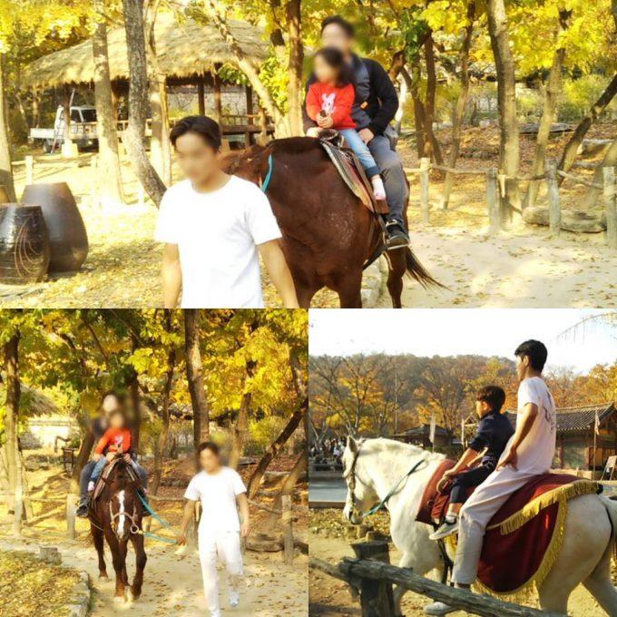 韓国民俗村 乗馬体験