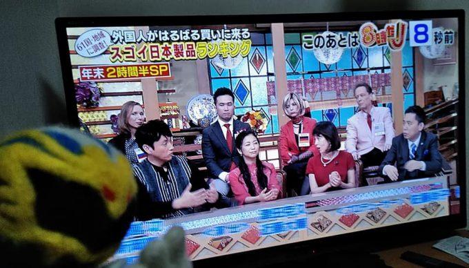 「世界が驚いたニッポン!スゴ~イデスネ!!視察団」