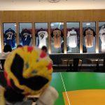"""新千歳空港に出来た北海道日本ハムファイターズカフェ、ダイニング""""ロスター""""が素敵!"""